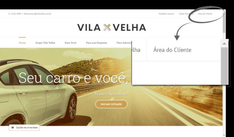 01-area-do-cliente-site-vila-velha